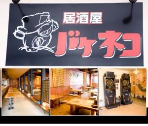 沖縄市 居酒屋 バケネコ